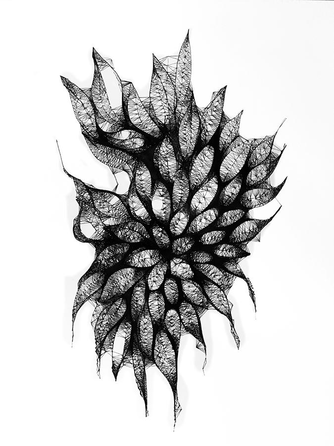 Morphogenesis15.jpg
