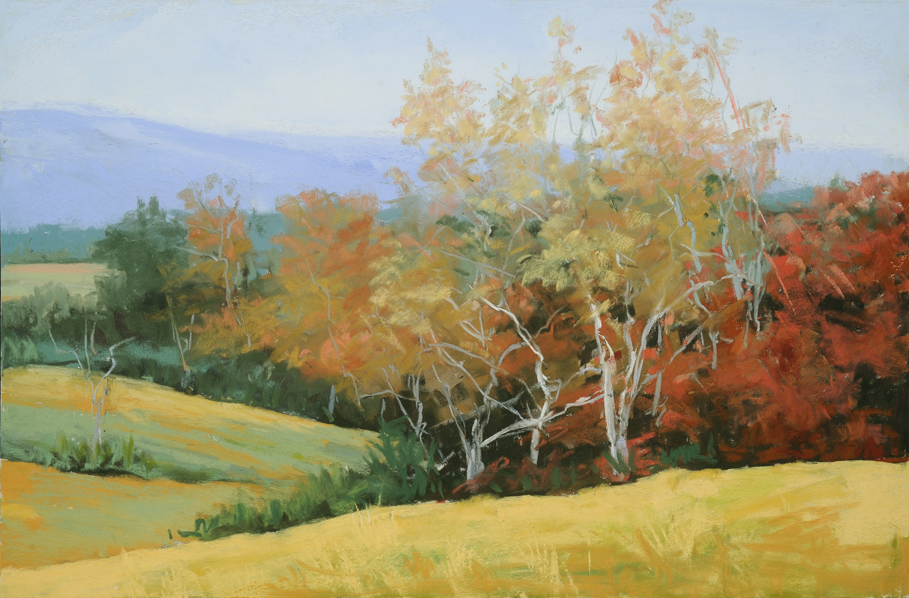 Virginia_Fall_Pastel_12x18_by_Betsy_Forster