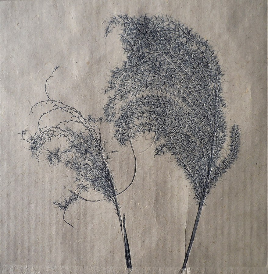 """Grasses on Bhutan Paper II"" by Mary D. Ott"