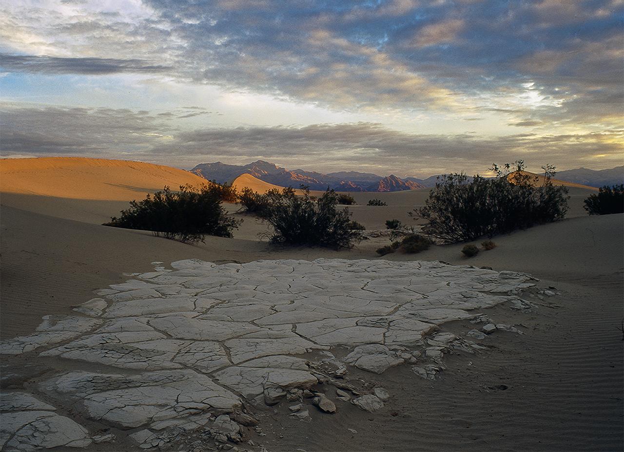 Dunes at Sunset/Harvey Kupferberg