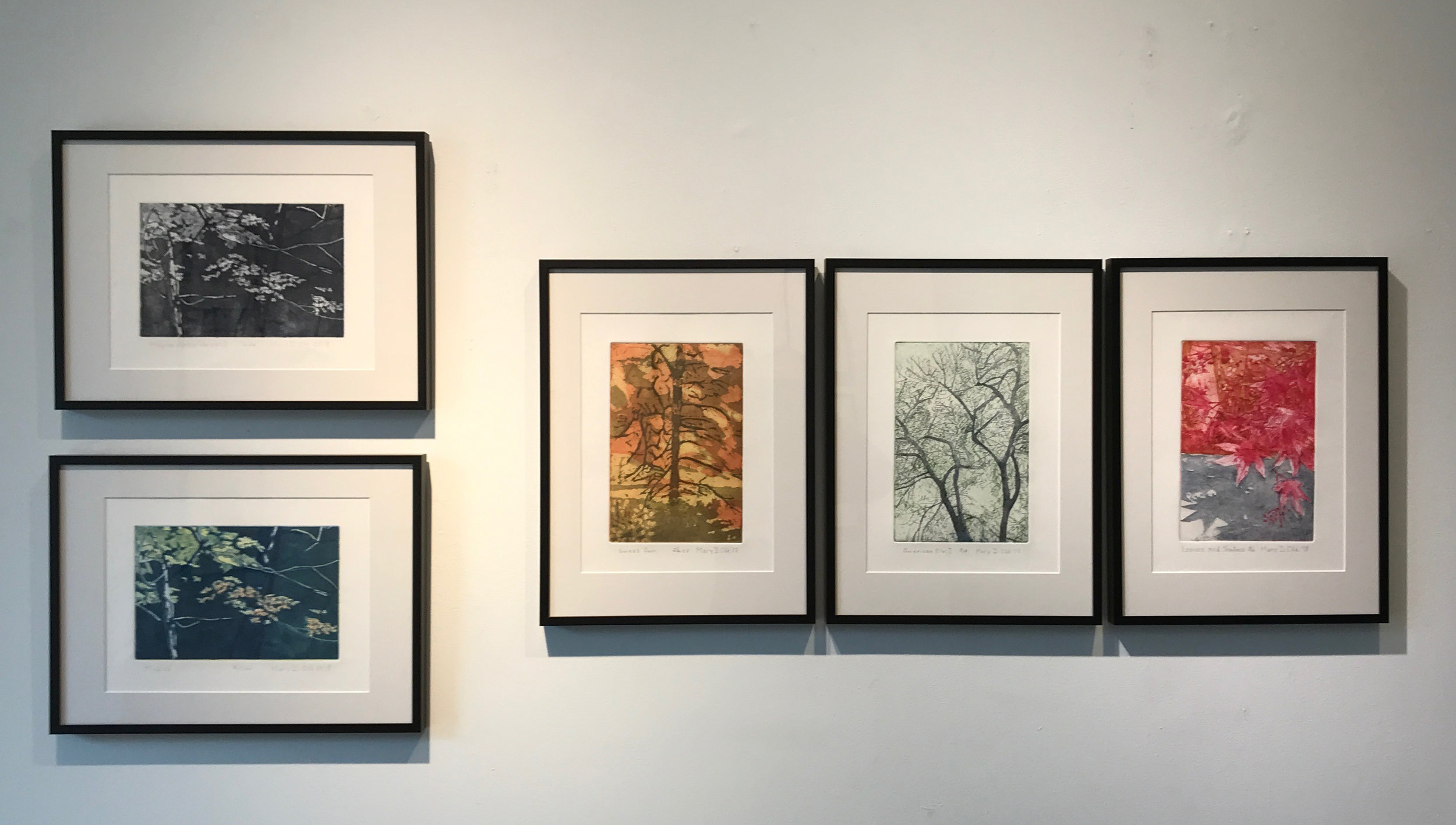 Images from  Branching Out , Original Prints by Mary D. Ott, May 2019, Touchstone Gallery
