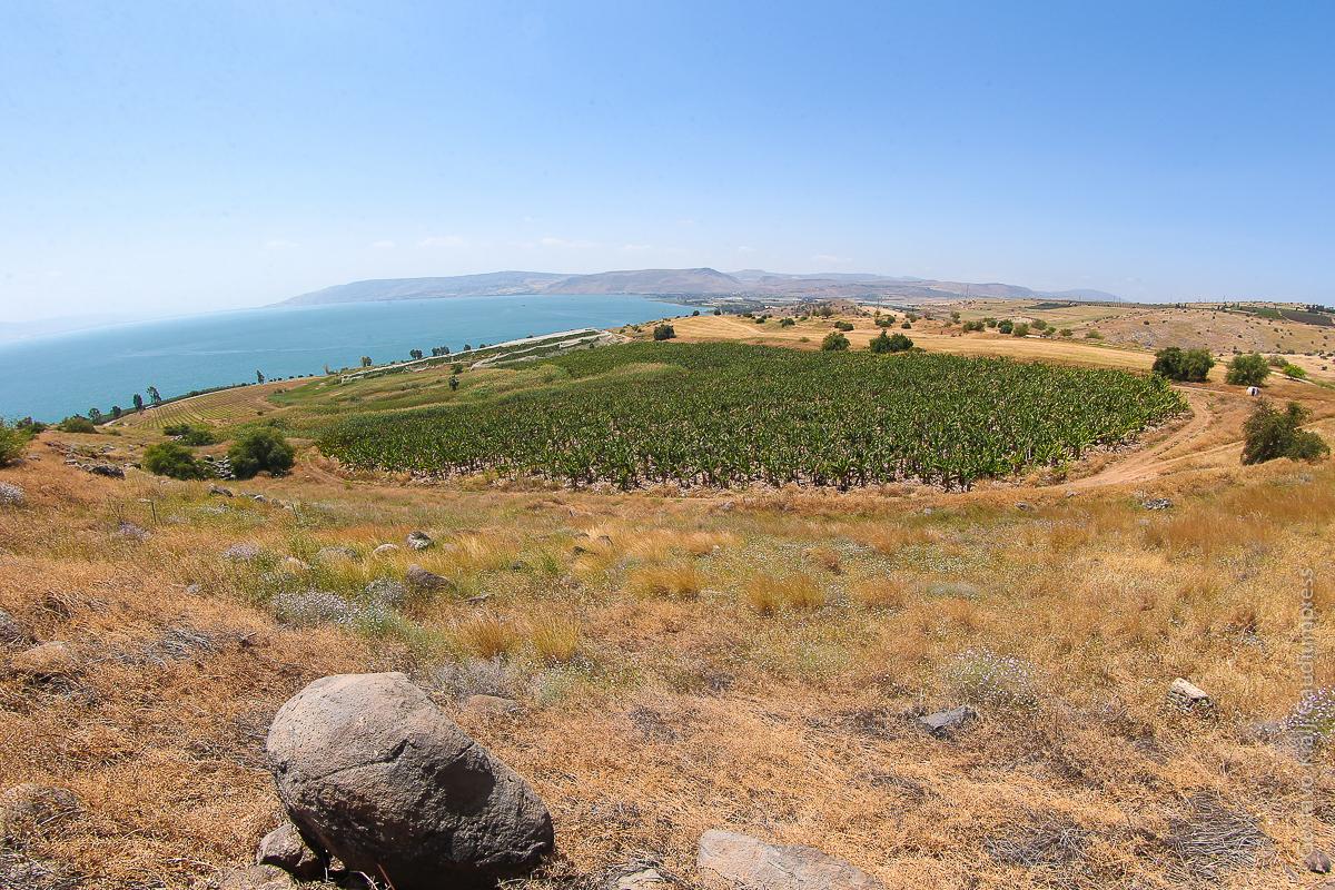 Tierra Santa: Galilea vista del monte de las Bienaventuranzas. Foto: Gustavo Kralj/GaudiumpressImages.com