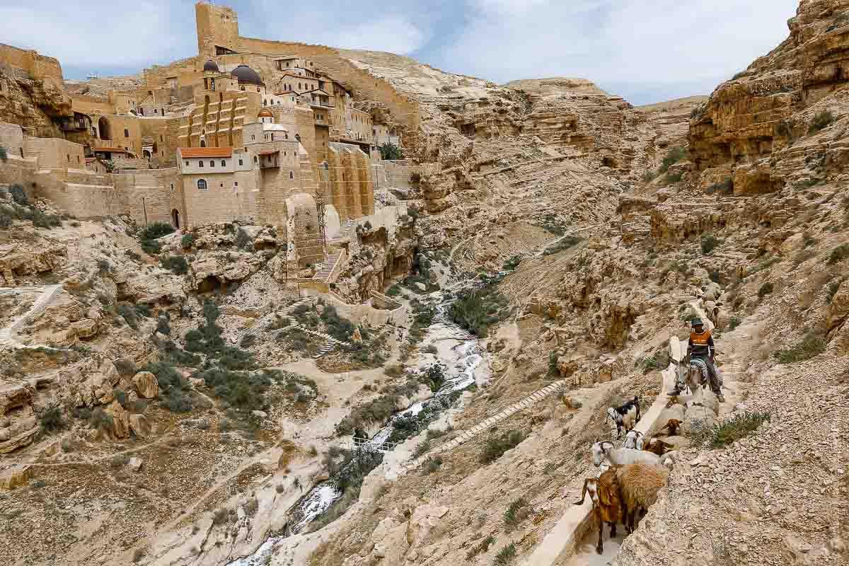Tierra Santa: Monasterio de Mar Saba, en los Confines de Judea. Foto: Gustavo Kralj/Gaudiumpressimages.com