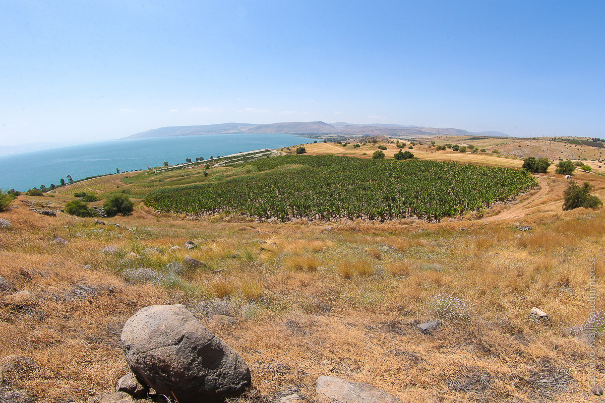 Tierra Santa: Mar de Galilea visto desde el Monte de la Bienaventuranzas. Foto: Gustavo Kralj/GaudiumpressImages.com
