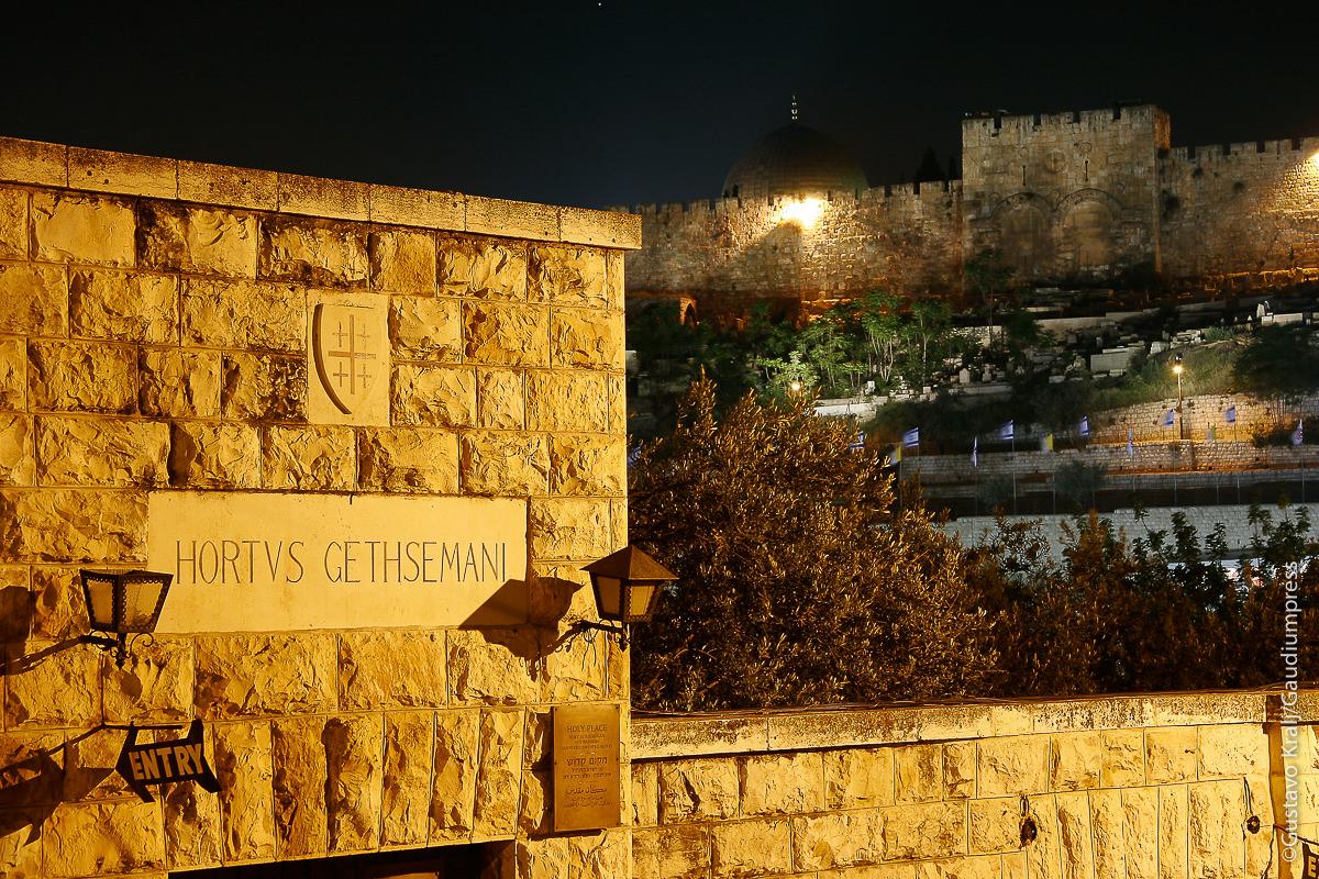 Tierra Santa: Jerusalem vista desde el Huerto de los Olivos. Foto: Gustavo Kralj/GaudiumpressImages.com