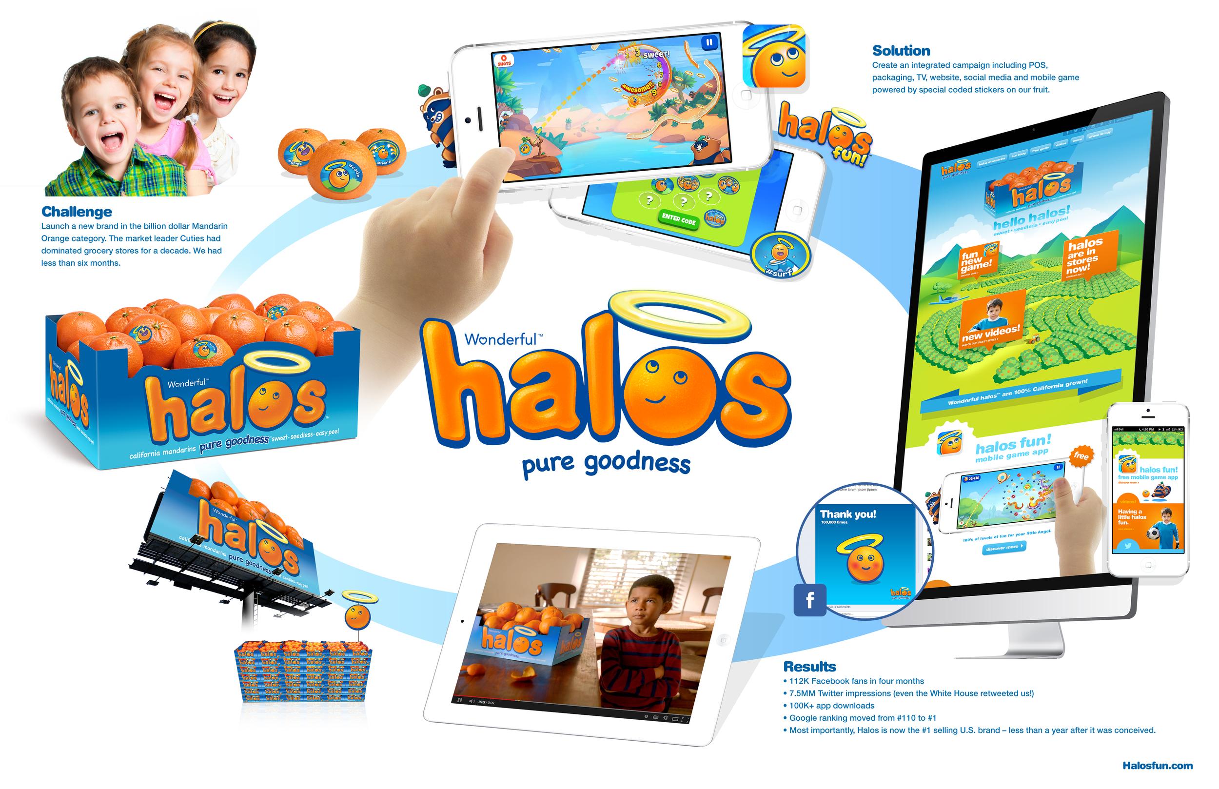 Halos_Presentation_board.jpg