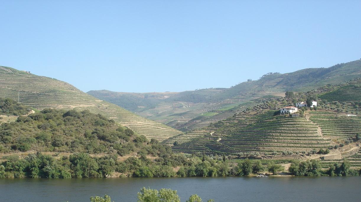Douro&Trbtry.jpg.JPG