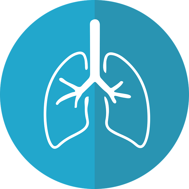 lungs-2803208_960_720.png