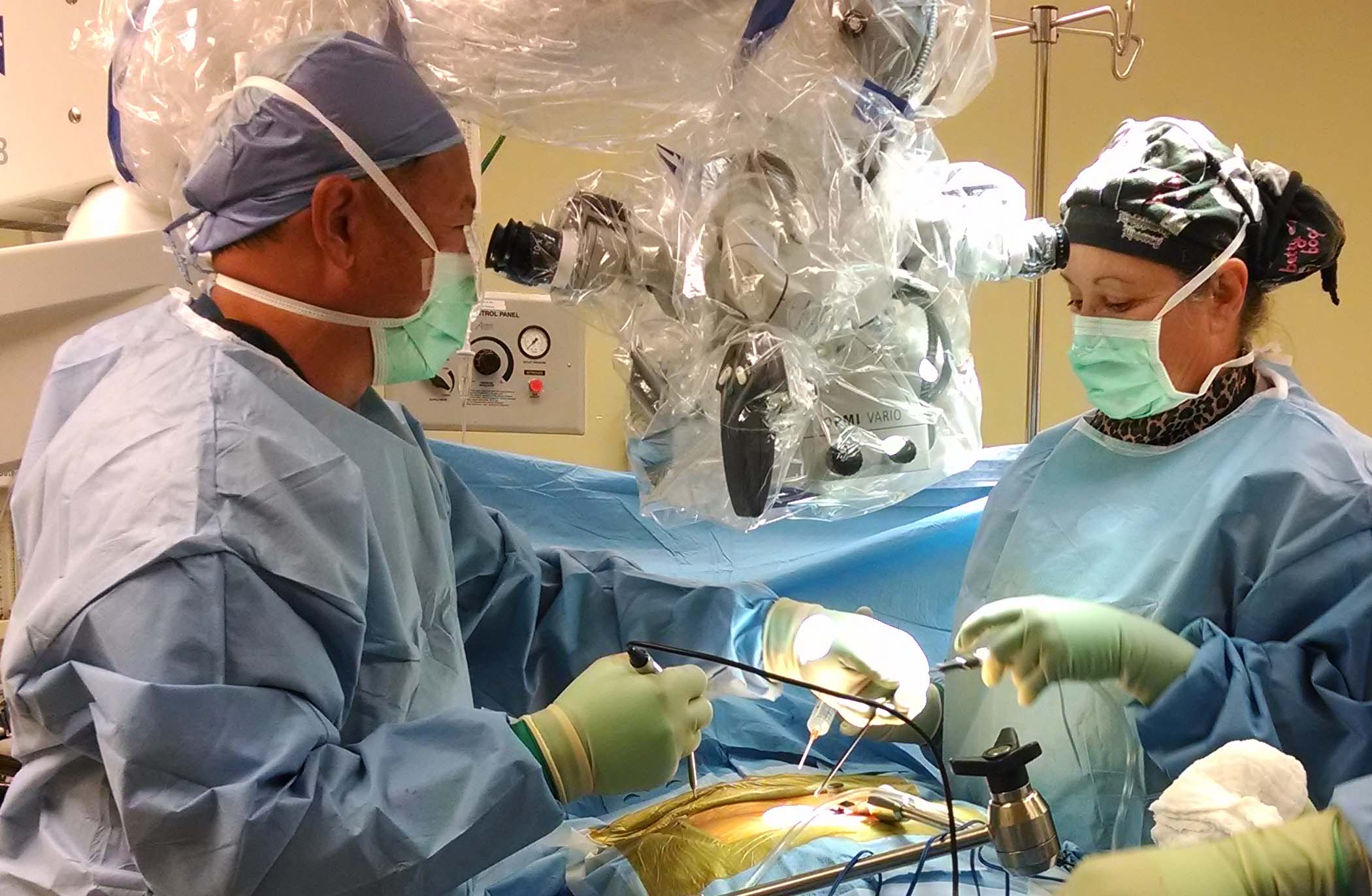 sugery picture 4.jpg