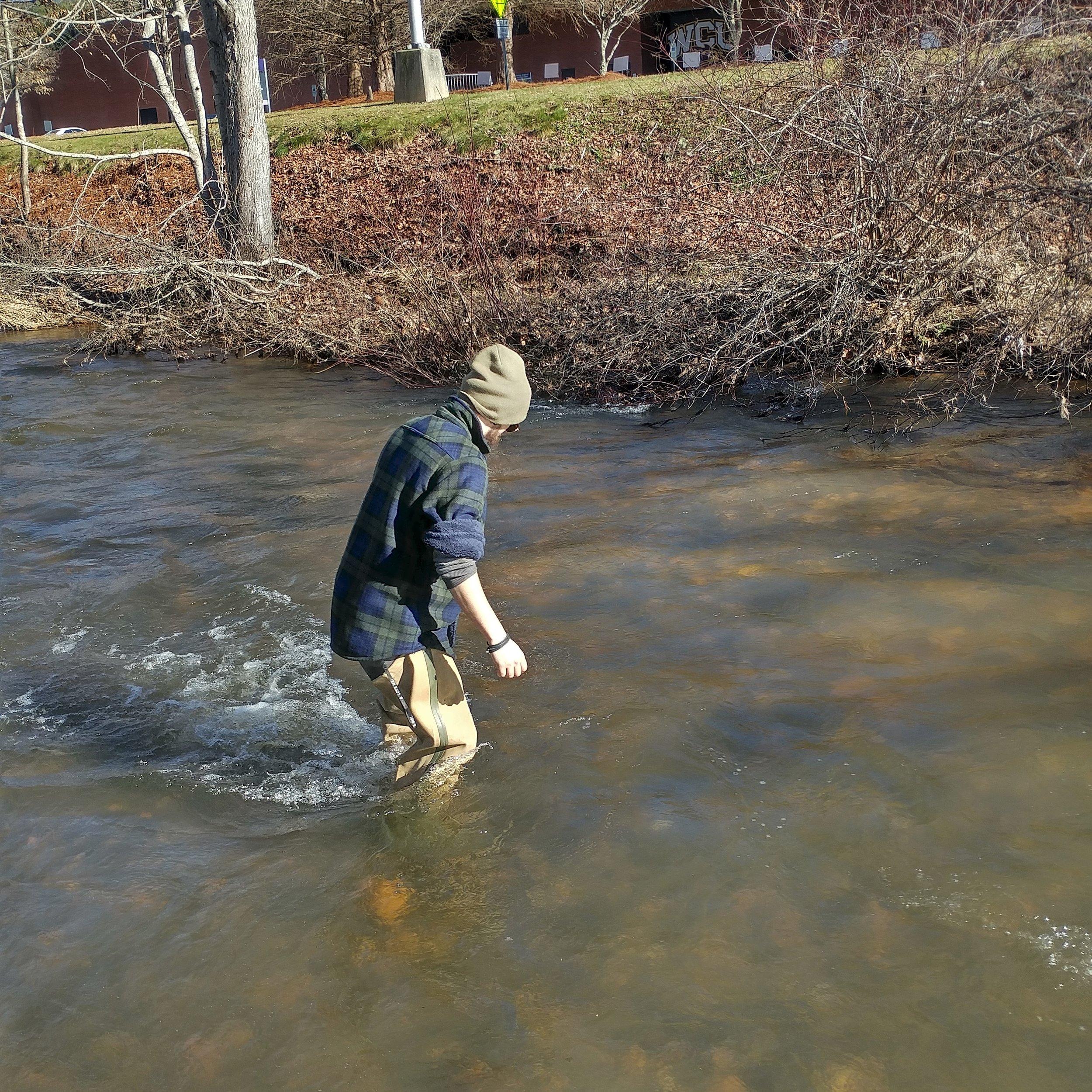 Cullowhee Creek 6.jpg