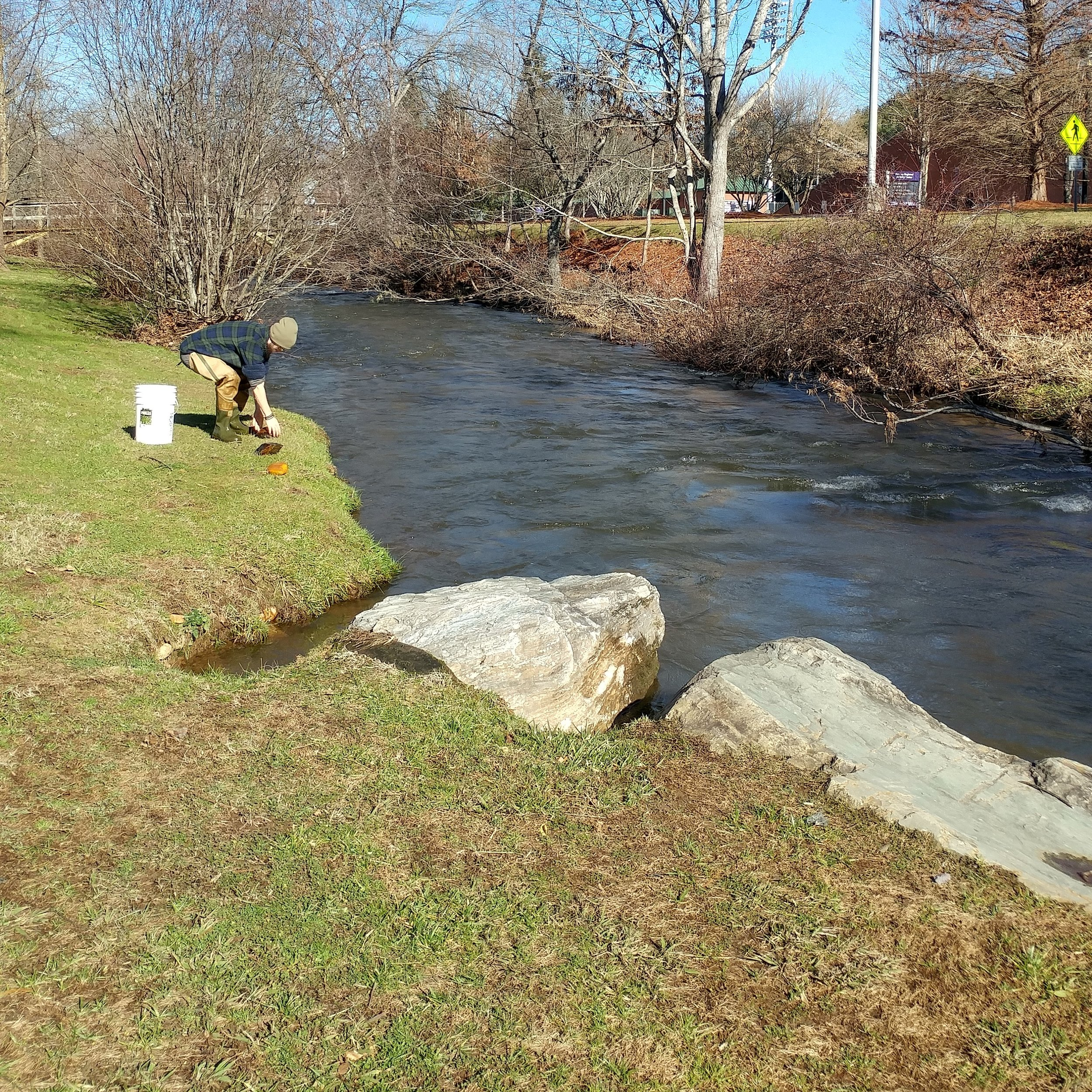 Cullowhee Creek 8.jpg