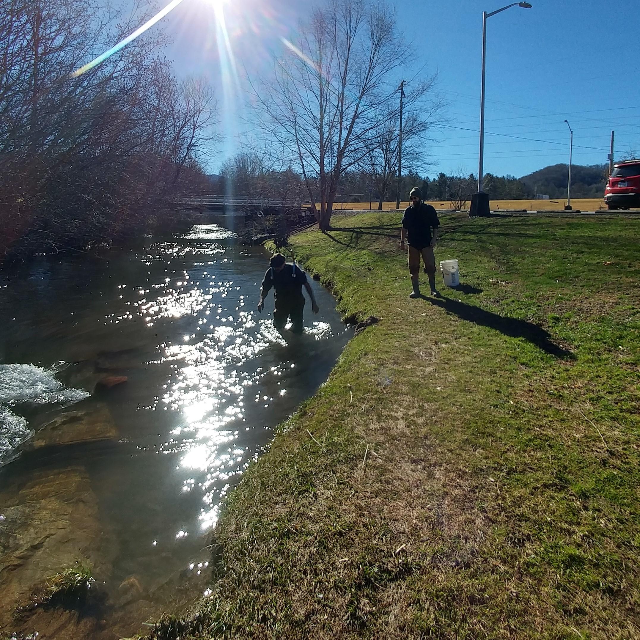 Cullowhee Creek 10.jpg