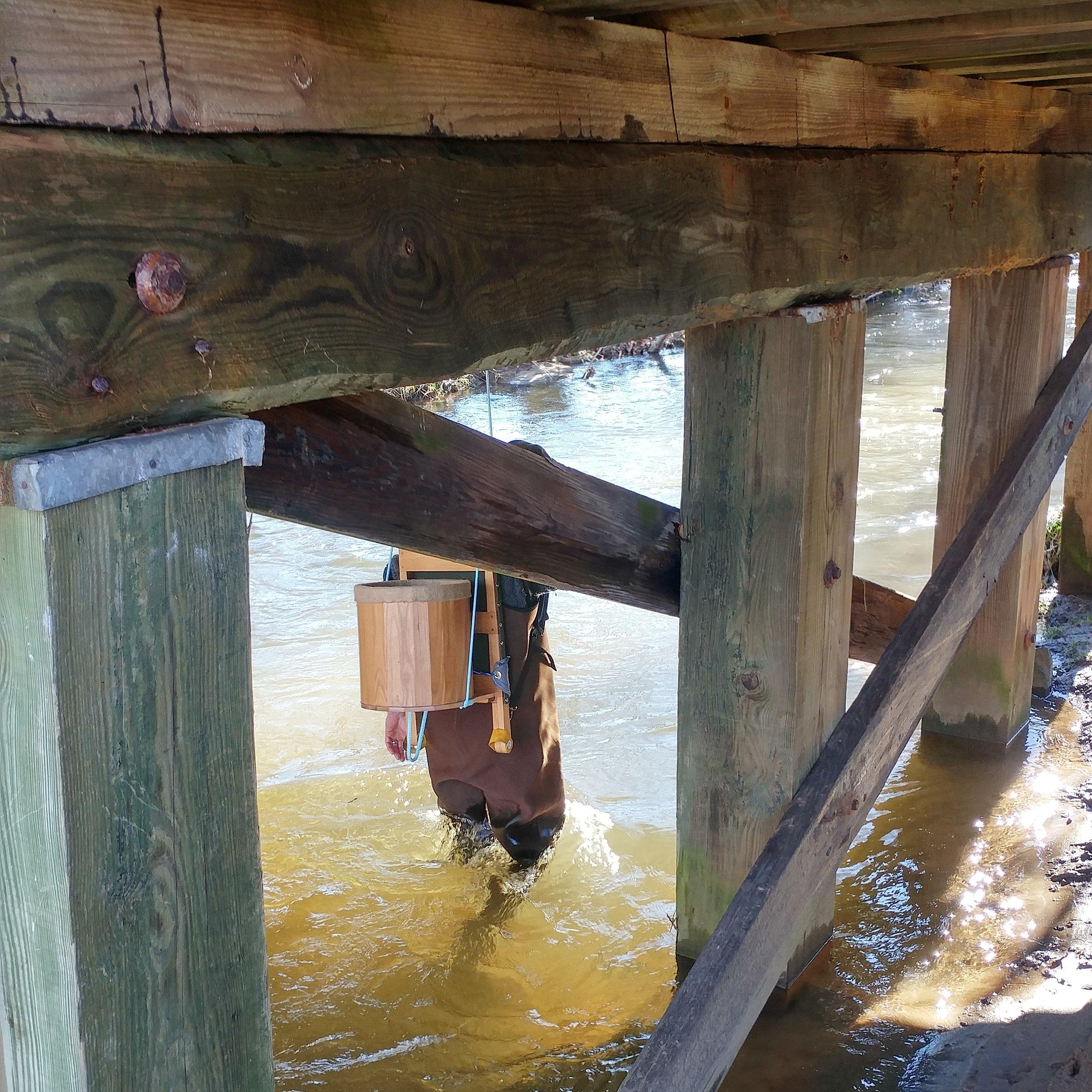 Cullowhee Creek 12.jpg