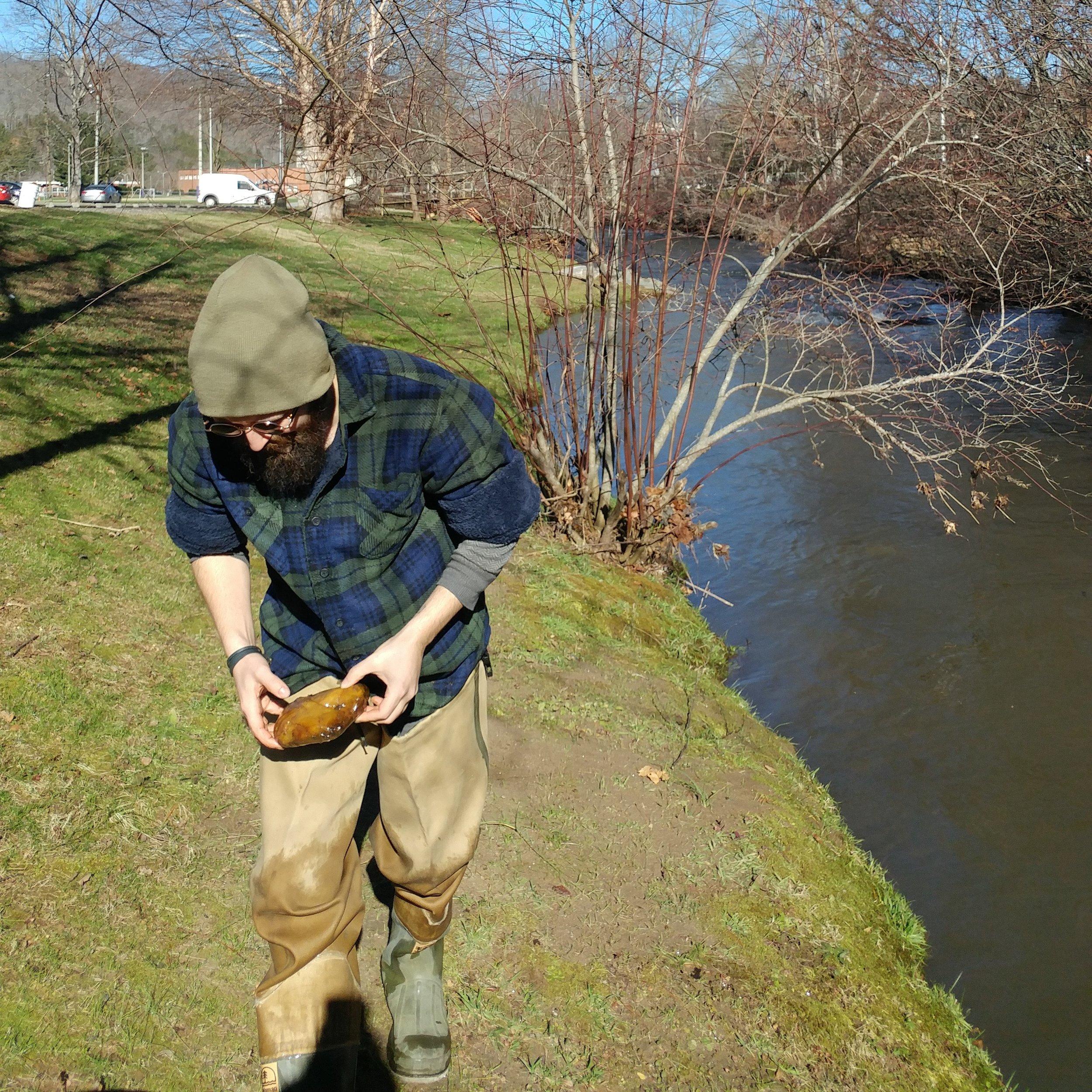 Cullowhee Creek 11.jpg