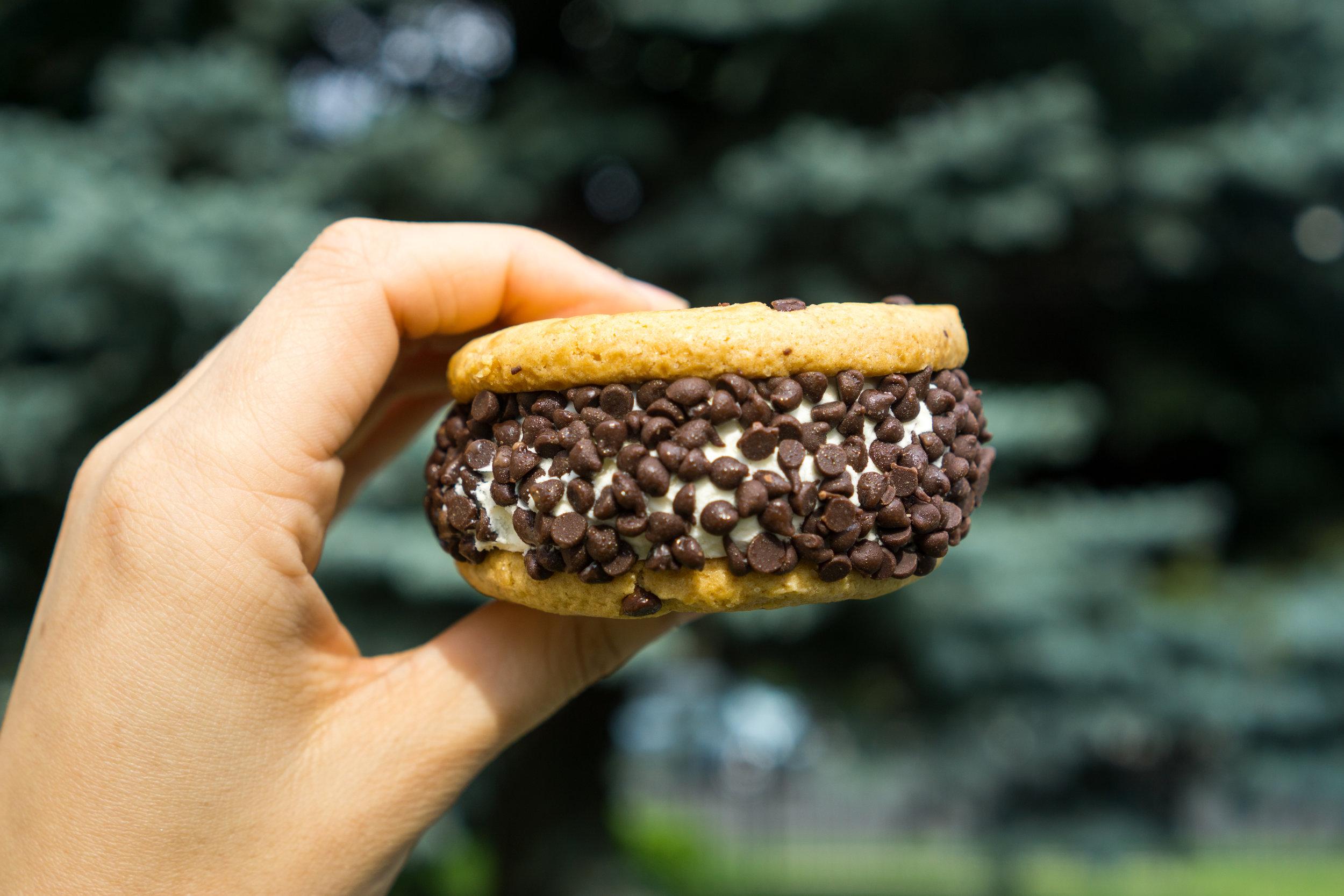 Ice Cream For A Dream Chunky Chip Ice Cream Sandwich