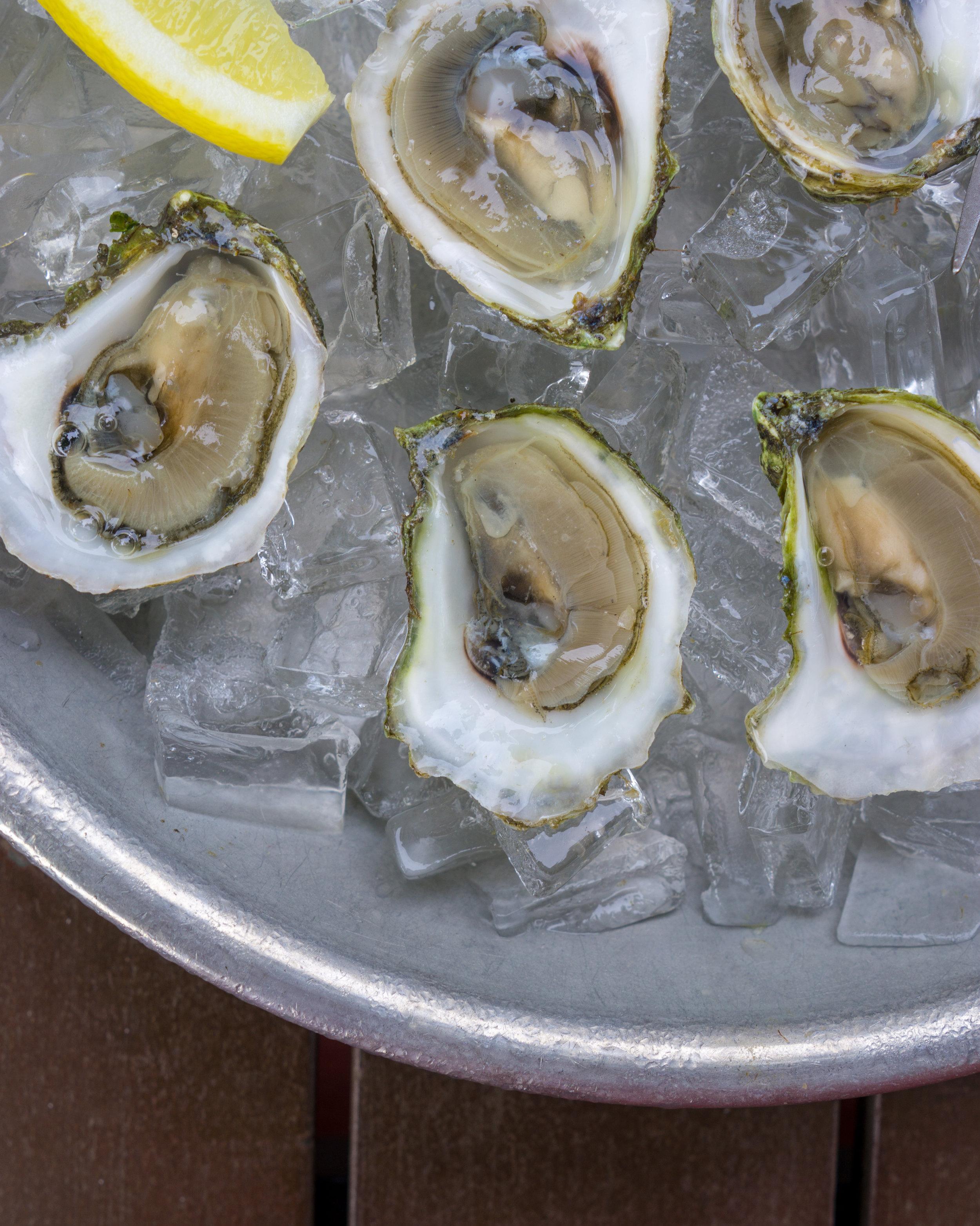 Oyster Club-20-Edit.jpg