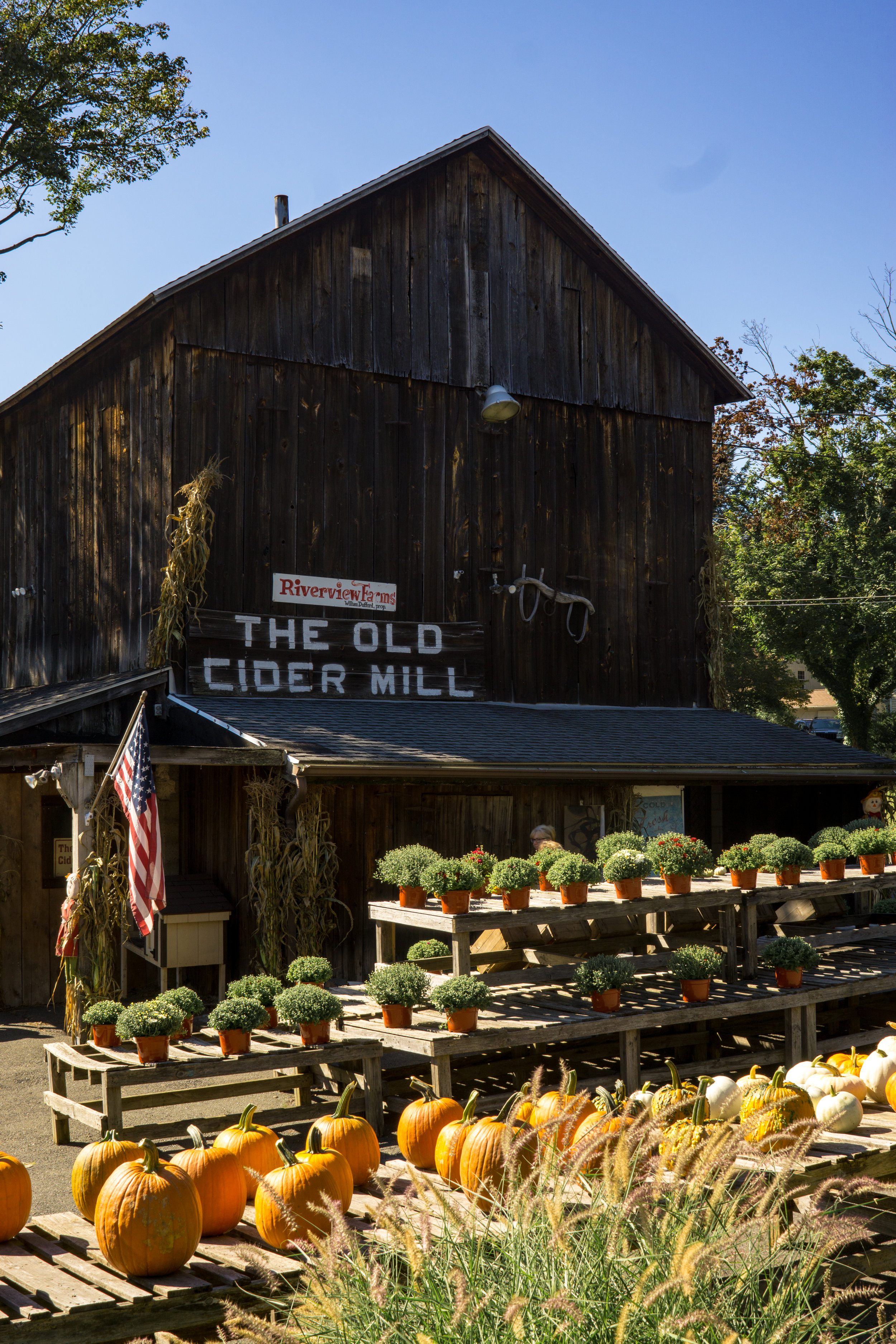 the old cider mill-17-2.jpg