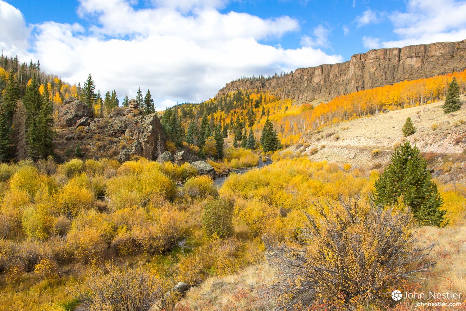 Gorgeous fall colors alongside Cebolla Creek. You'll follow this beautiful creek for quite a while during the La Garita Wilderness detour.