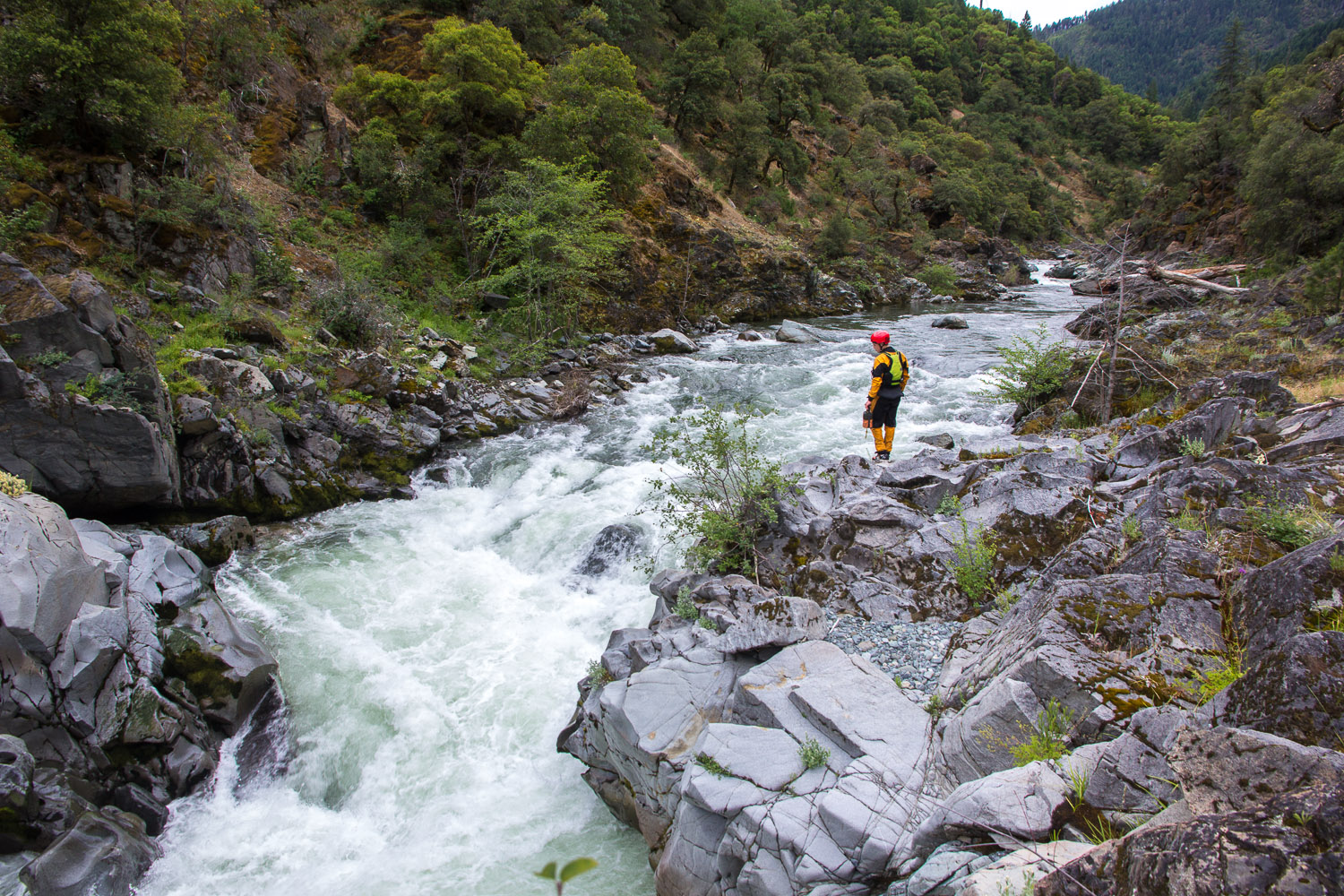 Scouting the entrance to what I believe was Amusement Park on the South Fork of the Cal Salmon. PC: Jordan Sherman