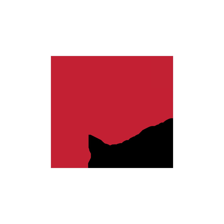 CP Temp Pro