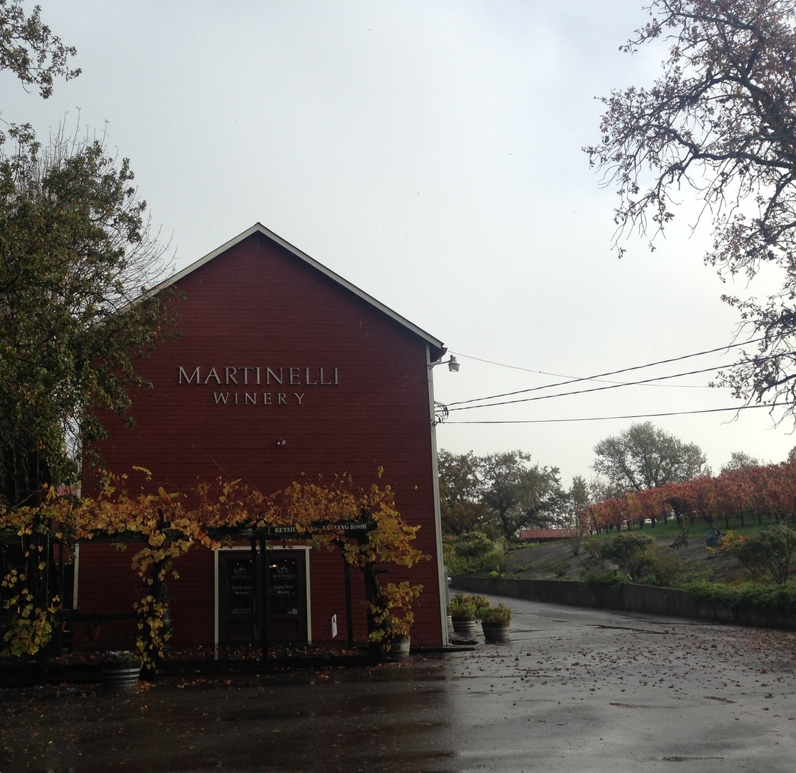 MArtinelli Winery 2.JPG