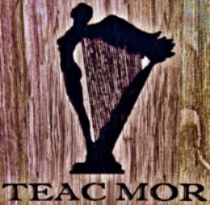 Teac Mor Brown Logo | VAULT29