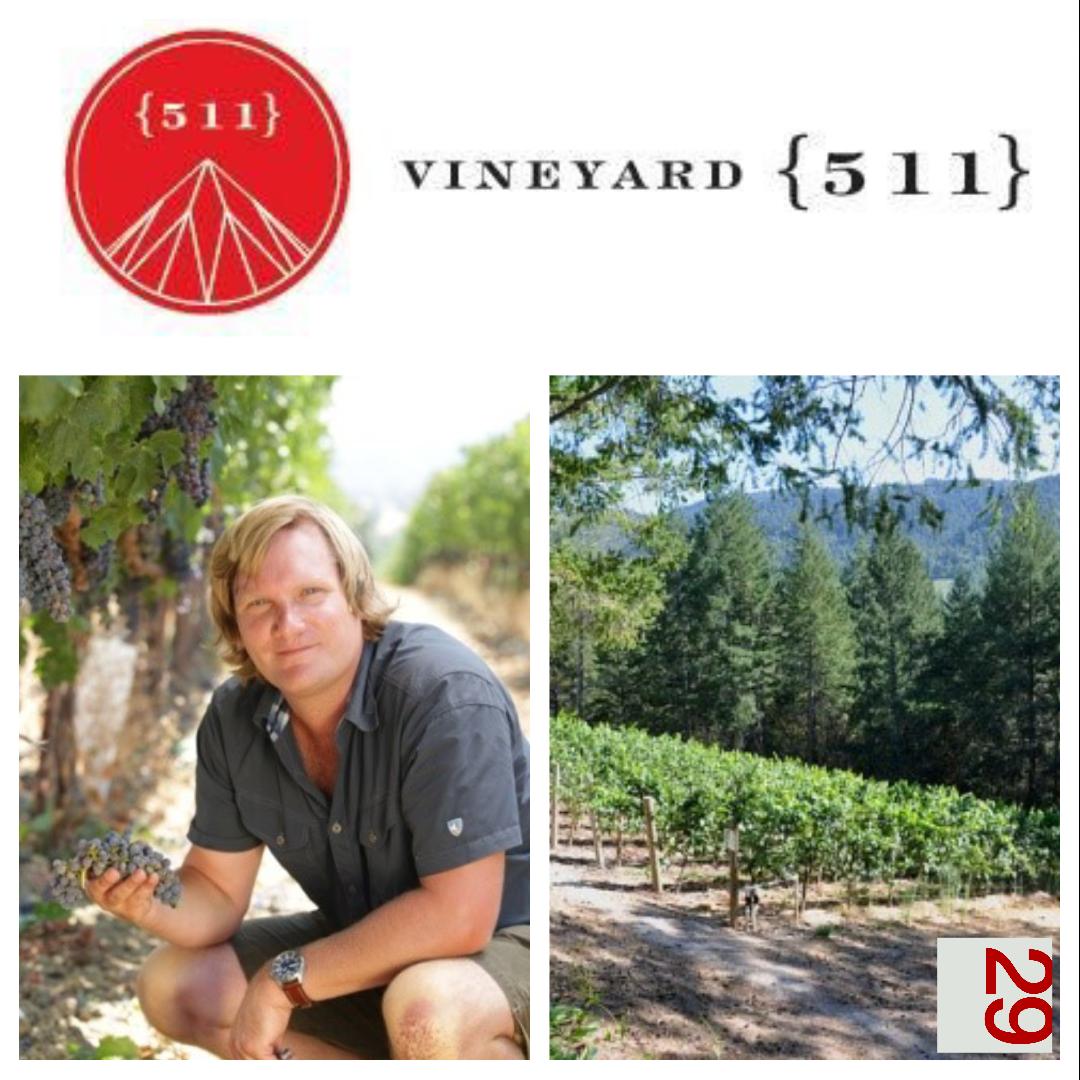 Vineyard {511} | VAULT29