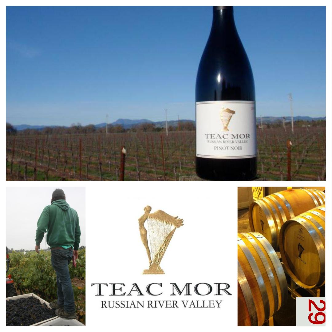 Teac Mor Wines | VAULT29