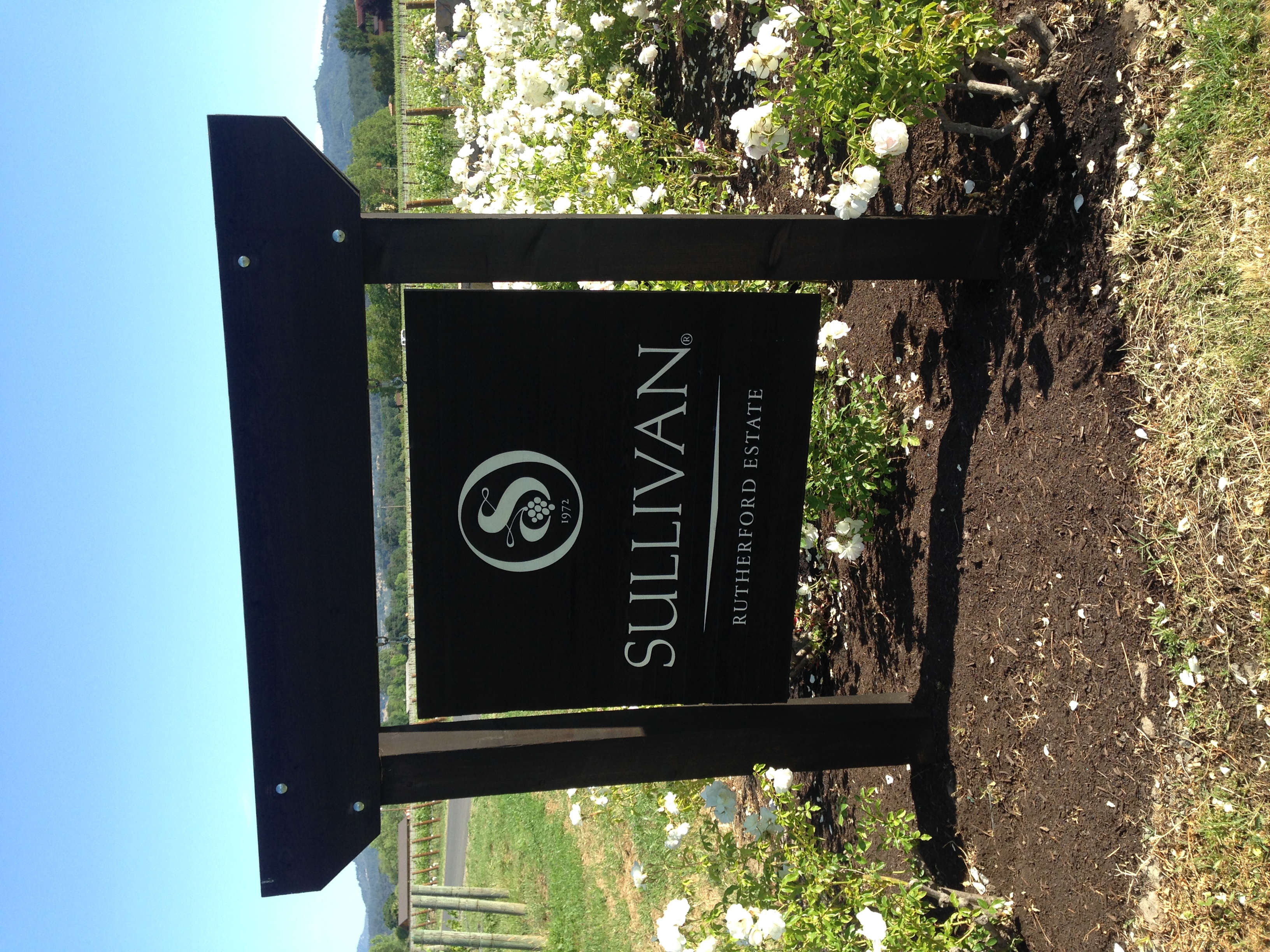 Sullivan Vineyards on VAULT29