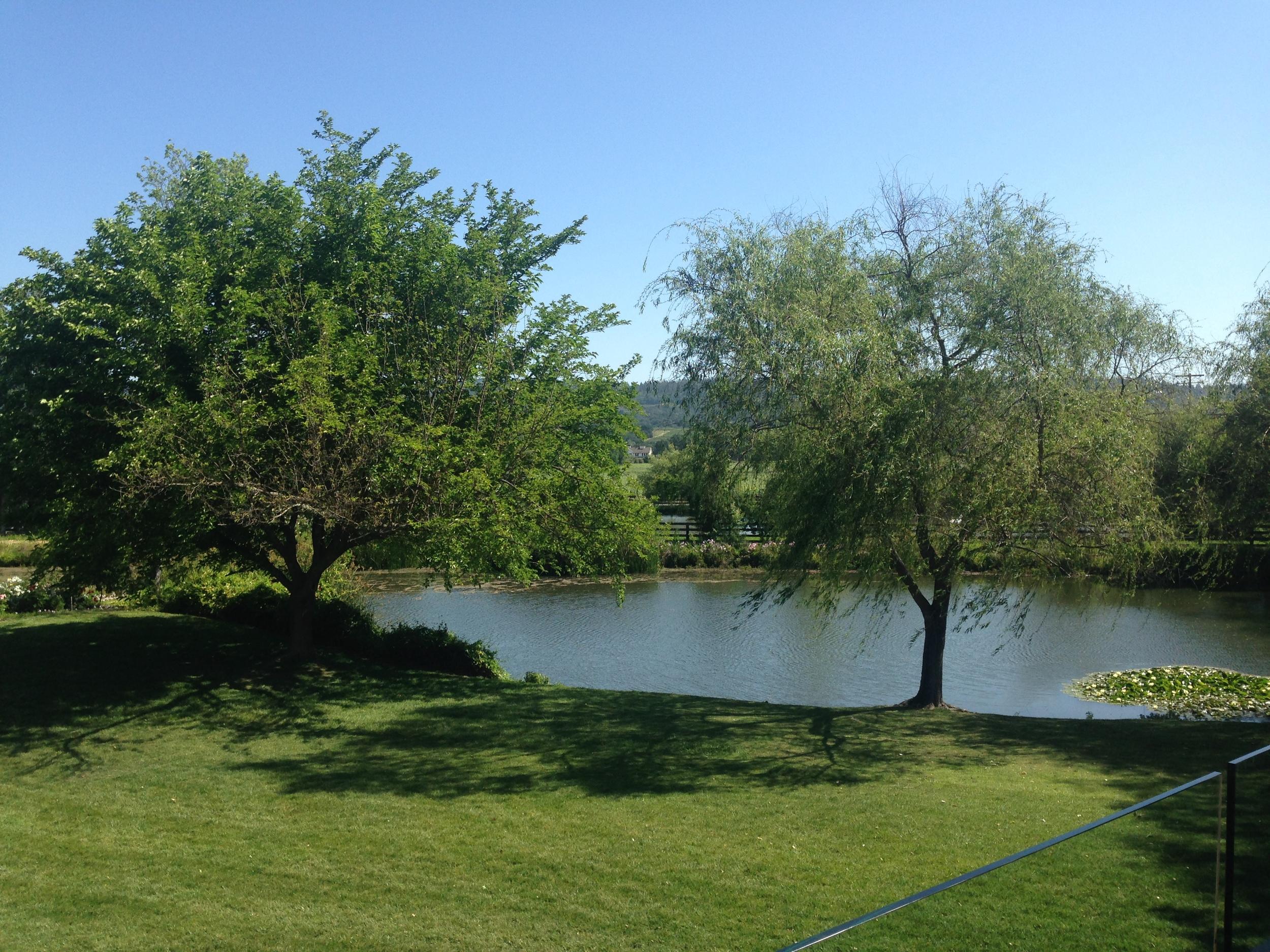 Sullivan Pond   VAULT29