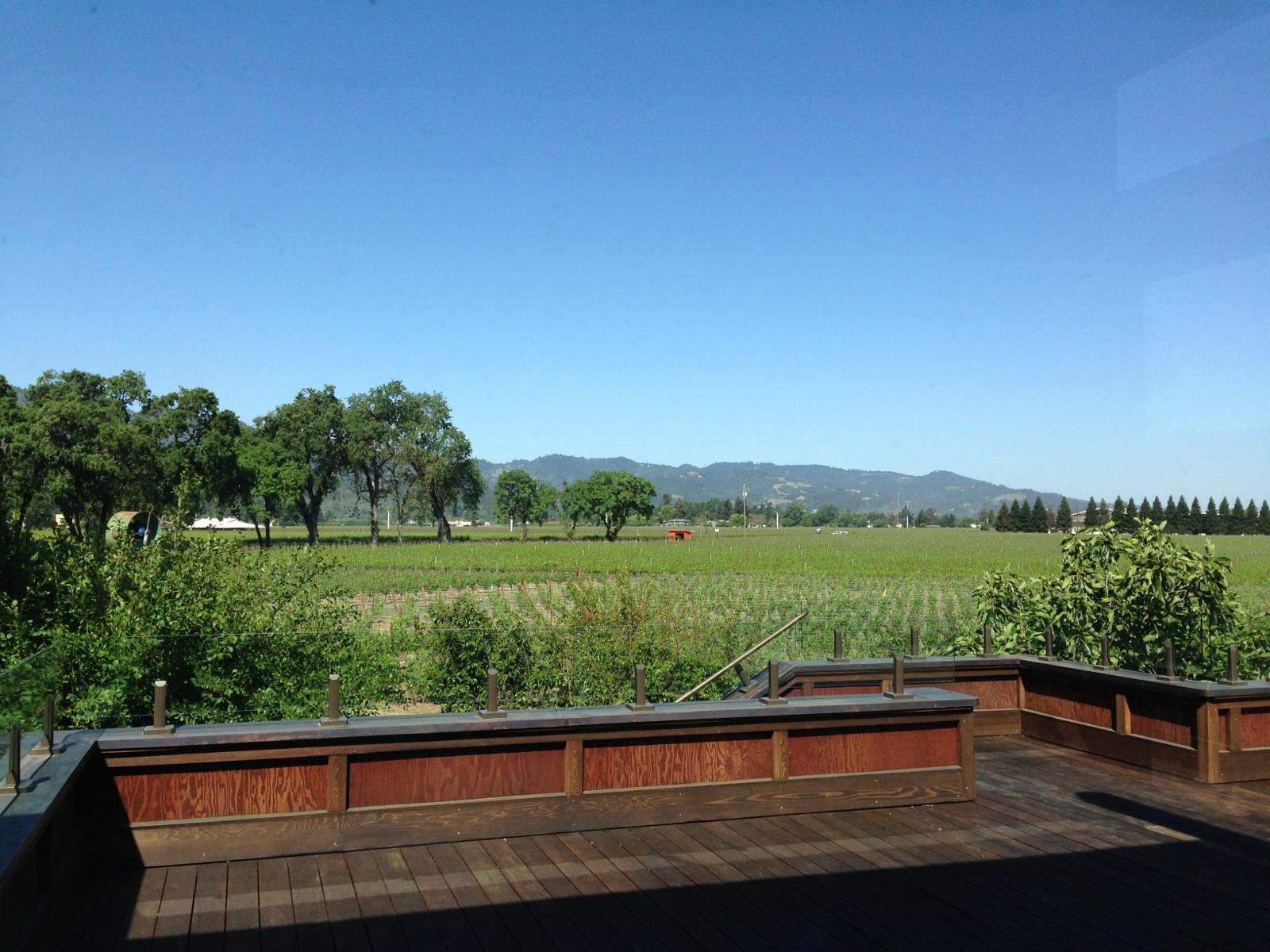 Sullivan vineyard view | VAULT29