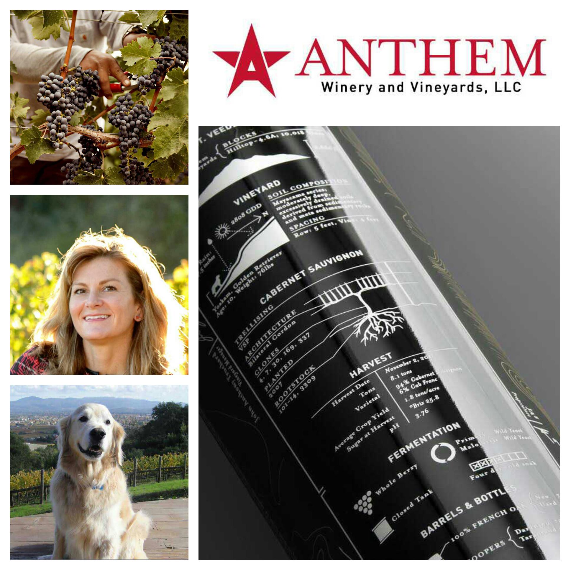 Anthem Winery on VAULT29