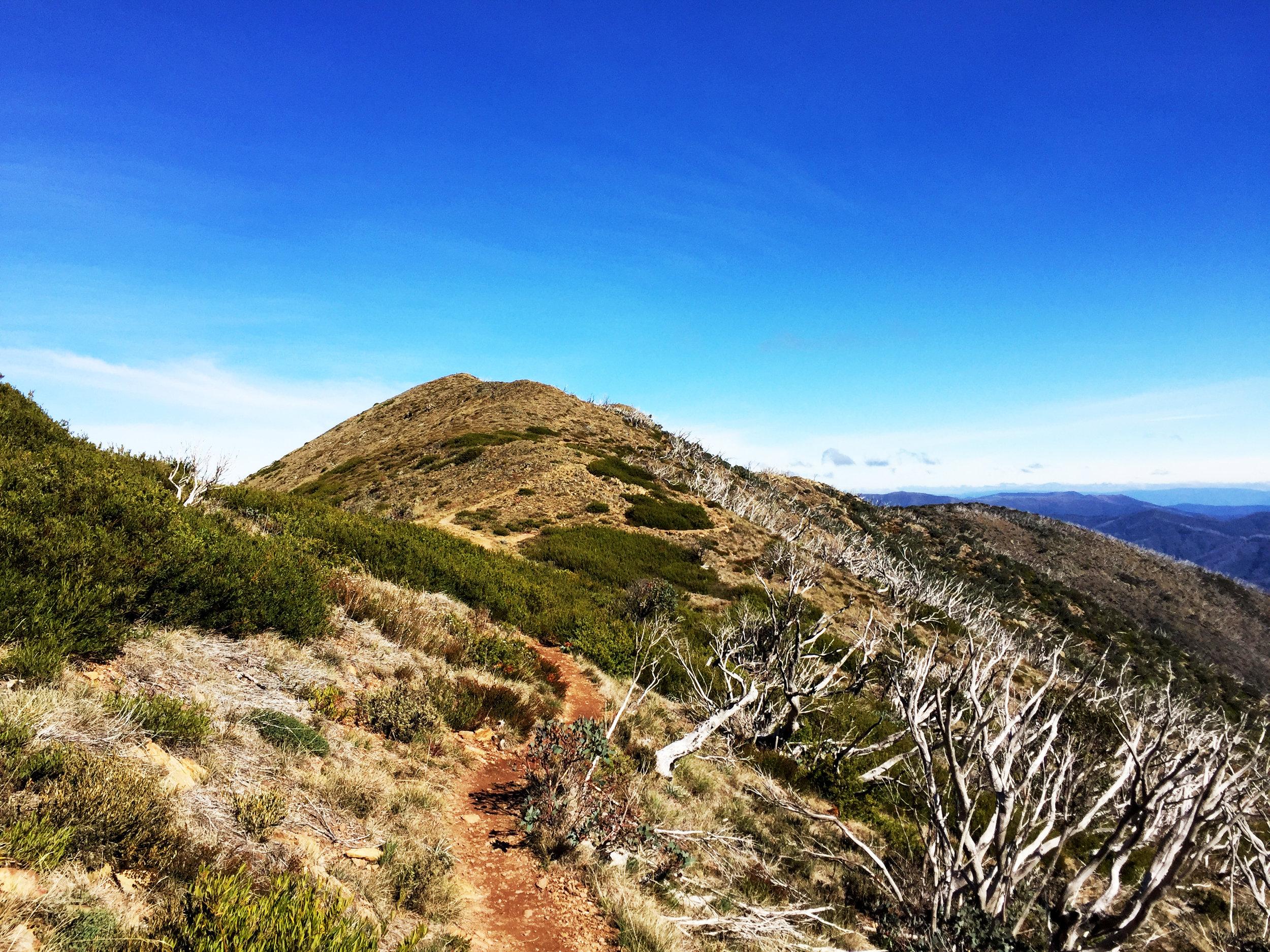 The trail along The Razorback