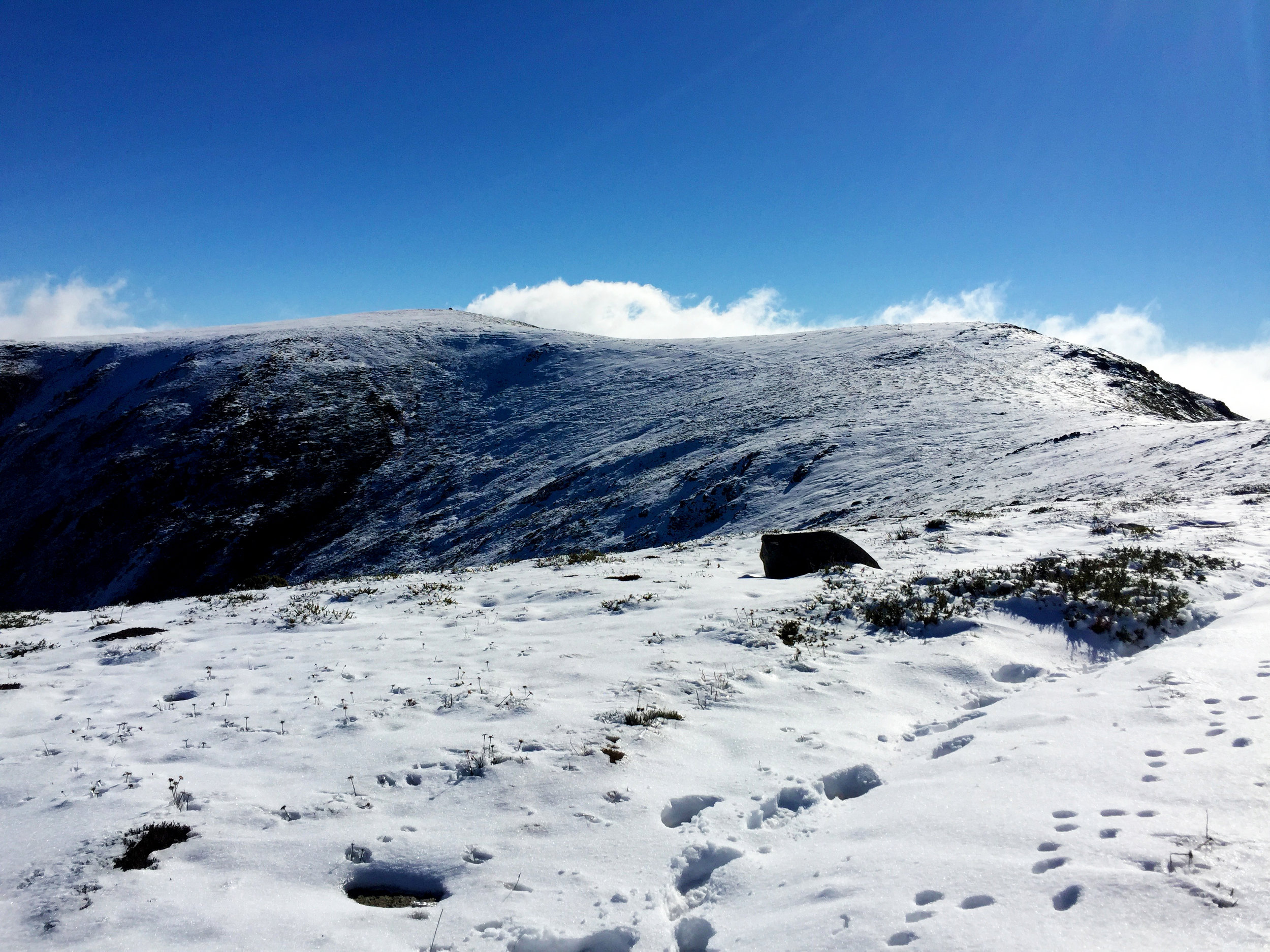 Mount Bogong with an early snow cover - snowfalls like this can occur at any time of year