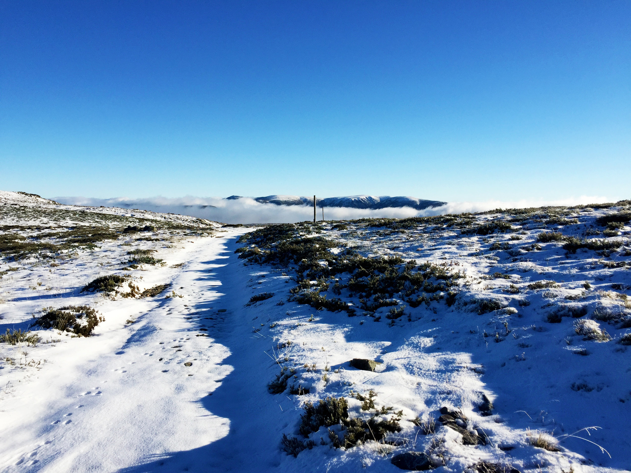 Views of Mount Bogong from near Mount Nelse