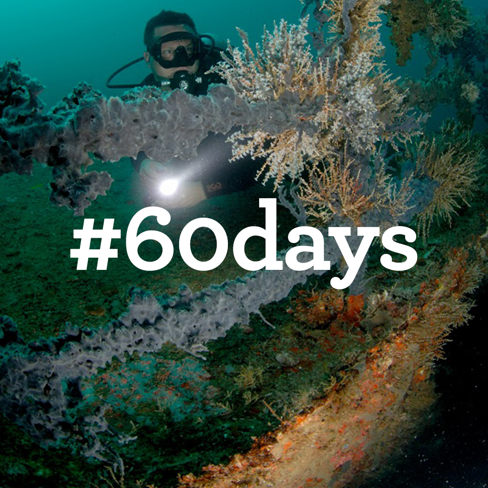 #60days-avatar8.png