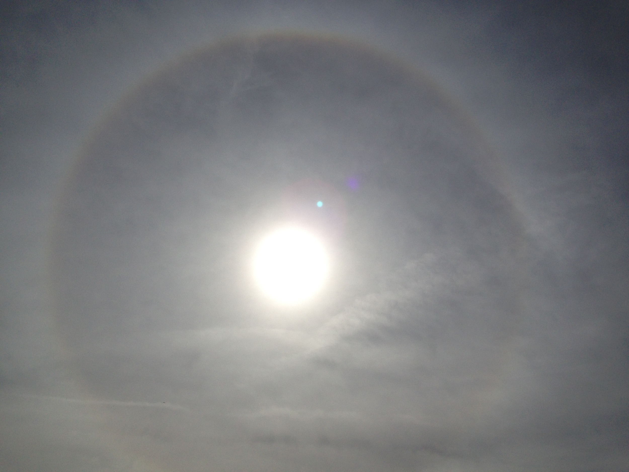 First time seeing a circled rainbow, is there a name for this beautiful sight? Sunbow?