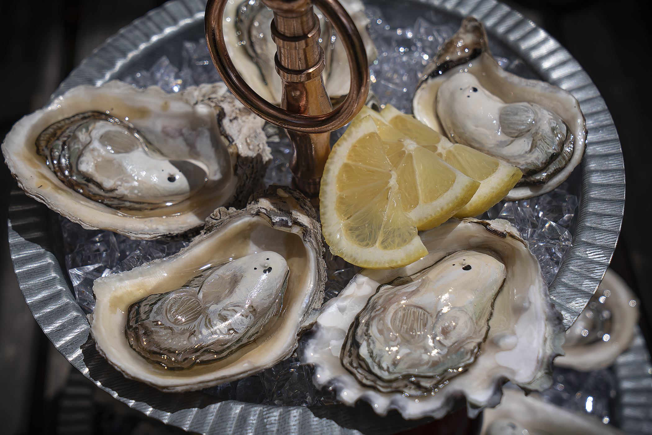 oyster3_small.jpg