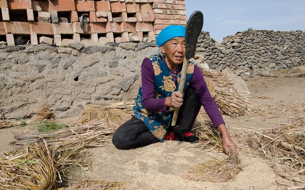 Hand-threshing millet to make a millet stalk broom