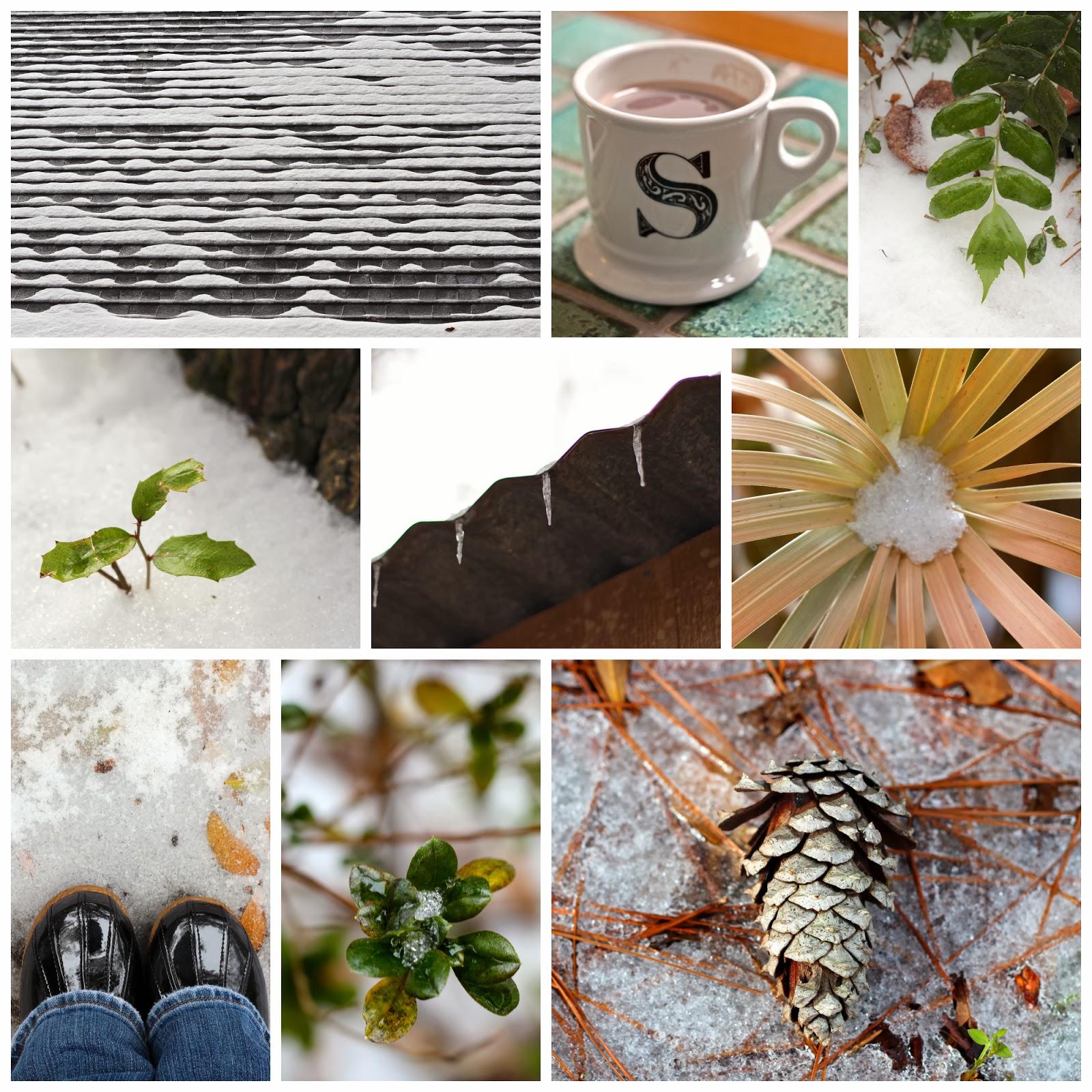 Snow+Day+Collage.jpg.jpg