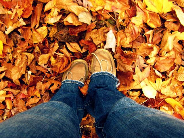 fall+feet.jpg
