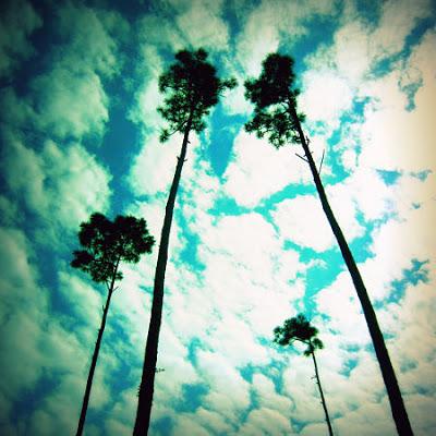 heavenward_opt.jpg