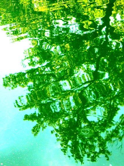 reflection+II+resized.jpg