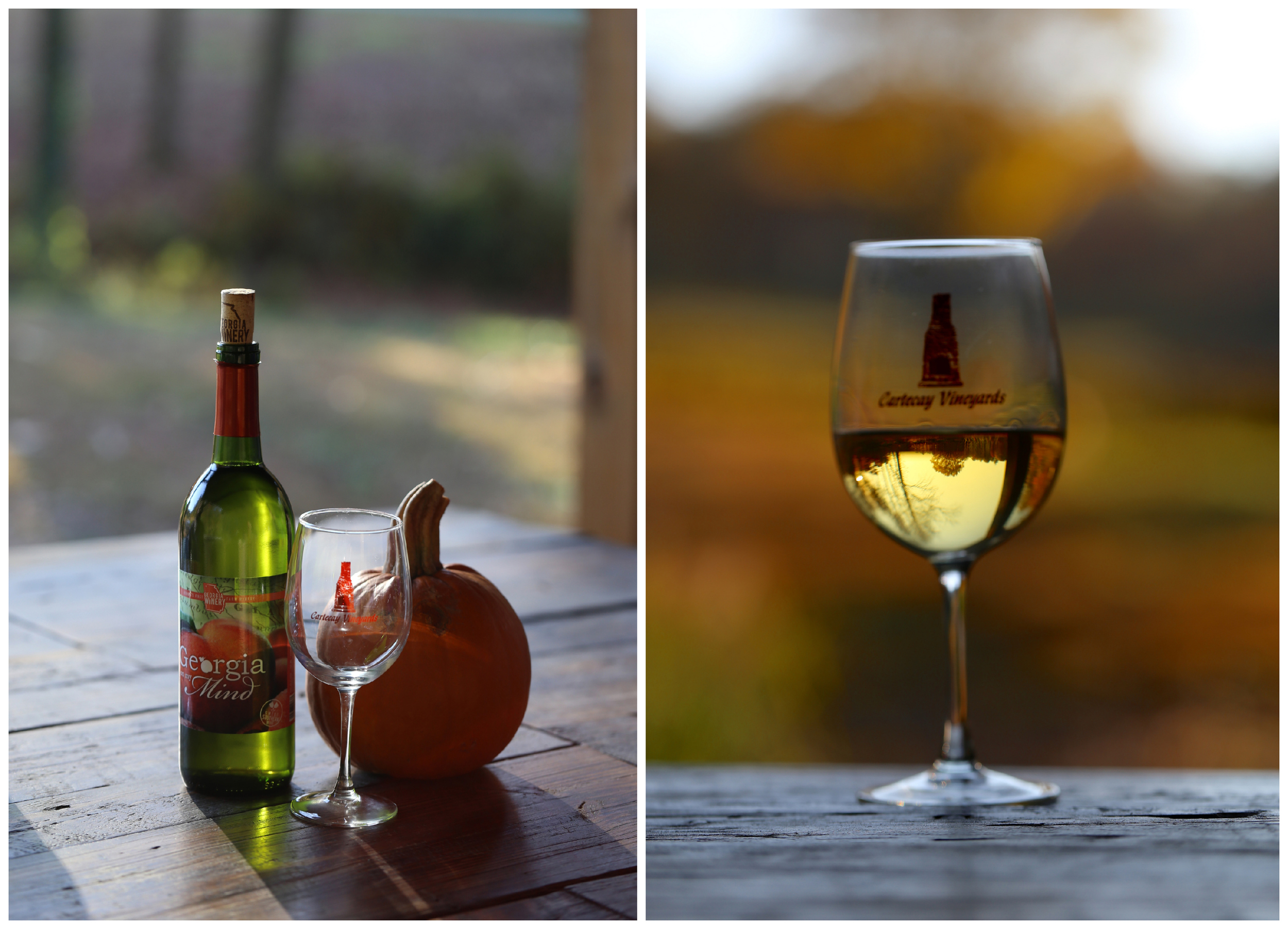 Cartecay Vineyards wine glass (Uninvented Colors Photography)