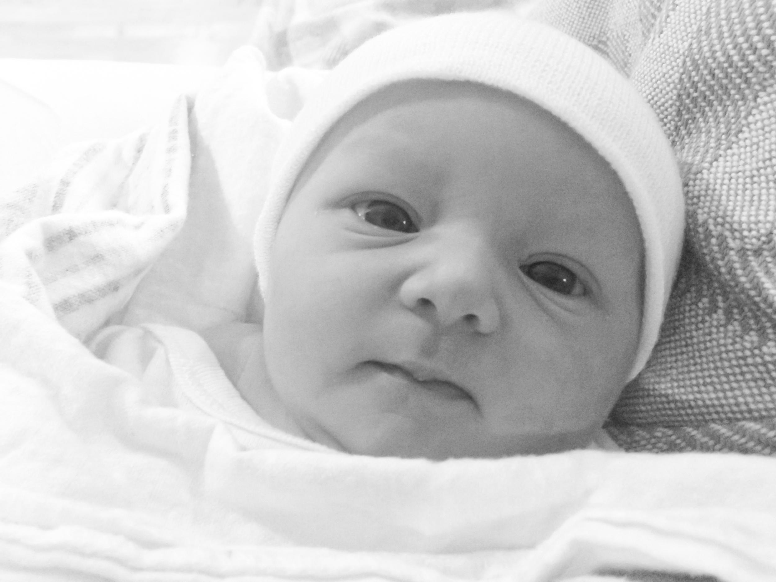 alert newborn baby (black and white)
