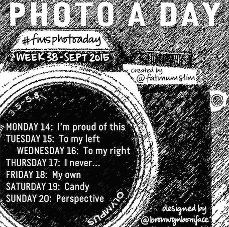 FMS Photo A Day 2015 Week 38