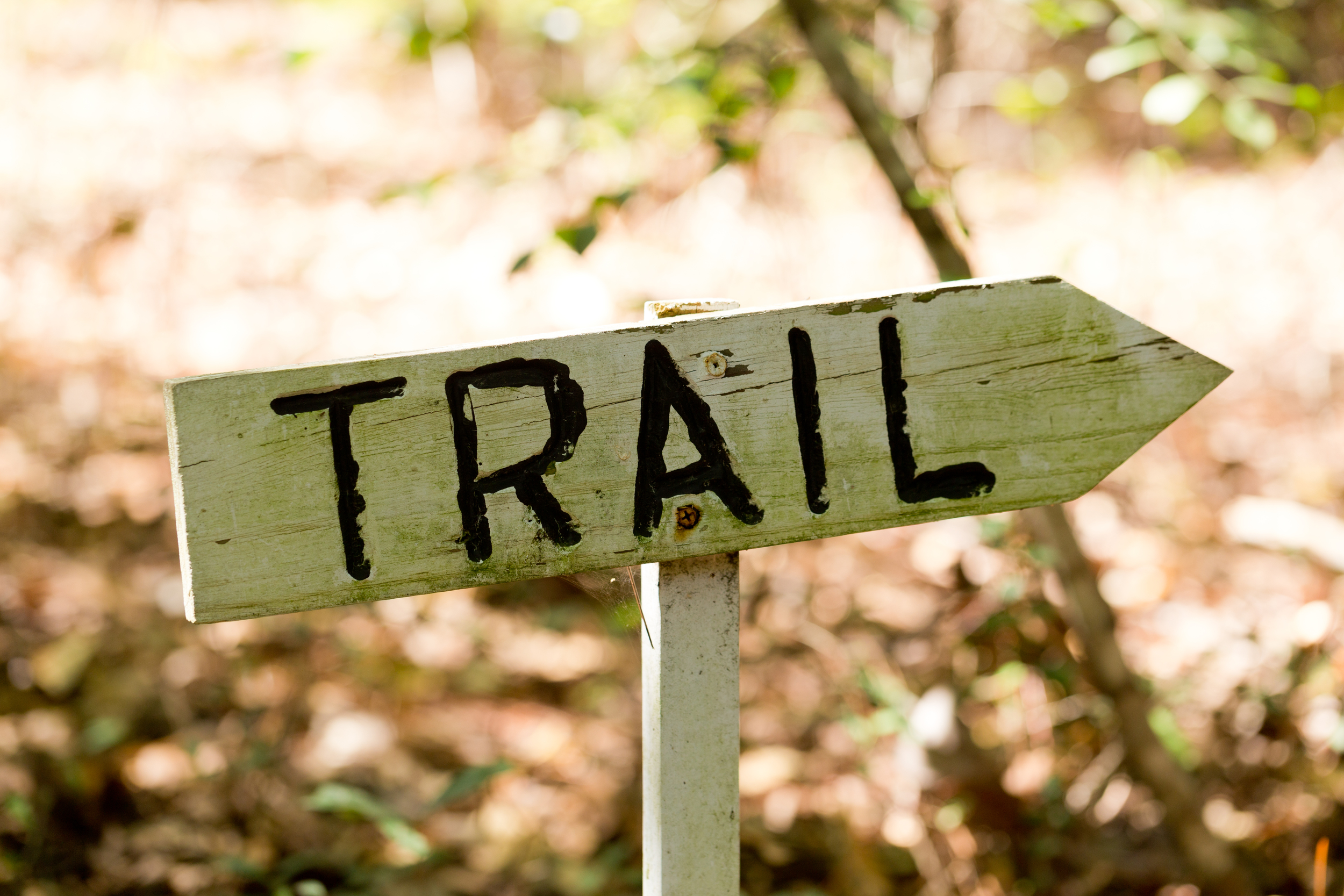 rustic trail sign with arrow