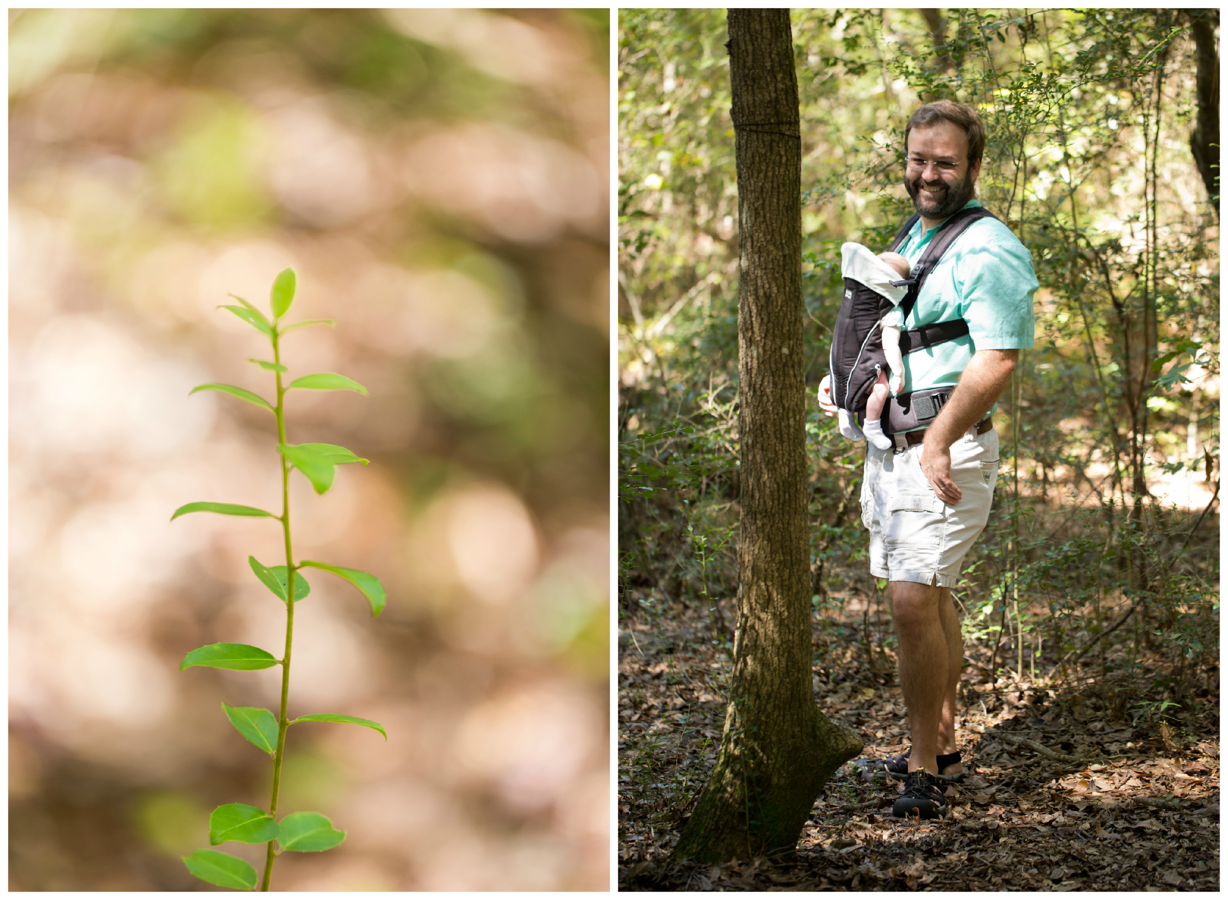 macro green plant, dad with baby in carrier in woods