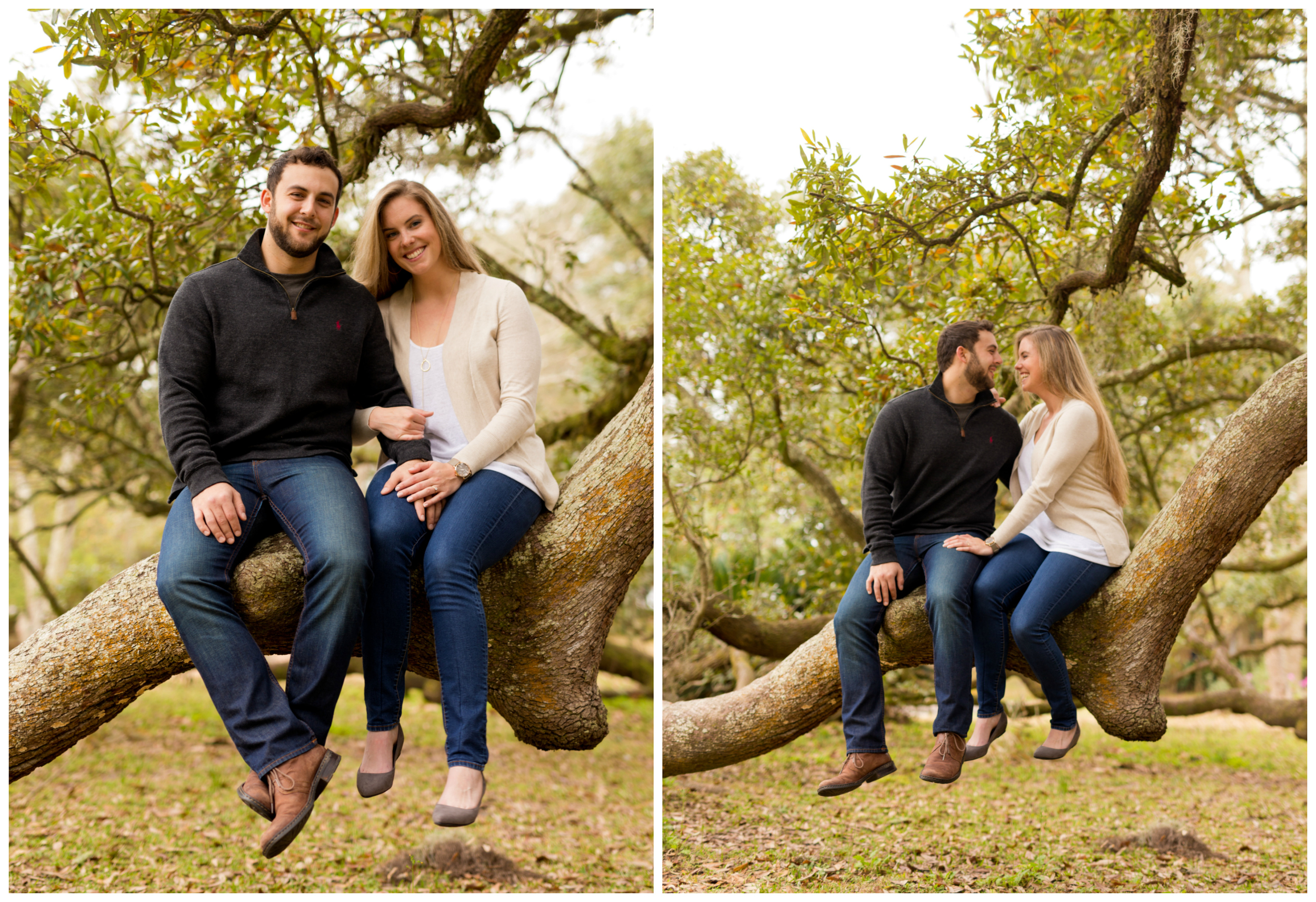 Engagement photos with couple sitting in live oak tree (Ocean Springs, Mississippi)