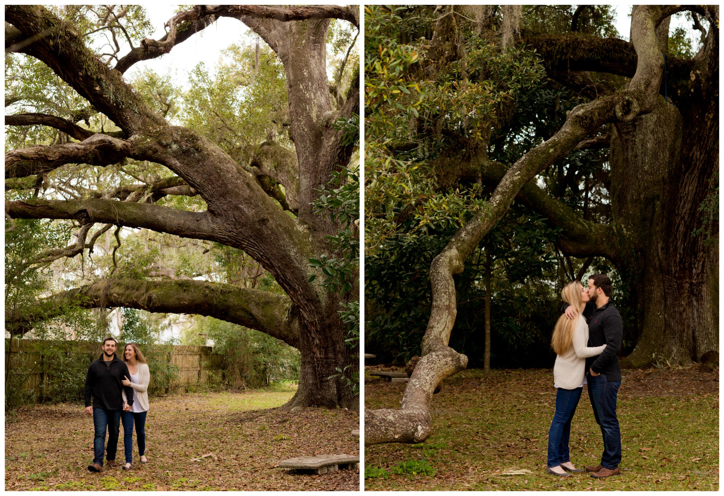 Engagement Photos at Ruskin Oak Tree